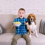 The Top 10 Must See Movies About Pets