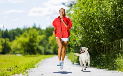 Running With your Pet: What You Need