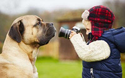 Capture Award-Winning Photos of Your Dog With These Simple Steps