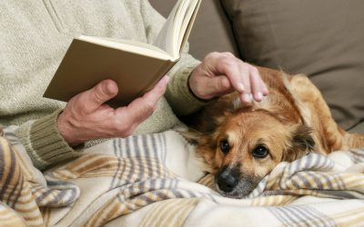 5 Great Pets For Senior Citizens