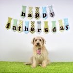 Father's Day Gifts for Dog Lovers