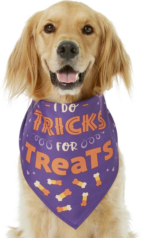 I Do Tricks for Treats Halloween Bandana