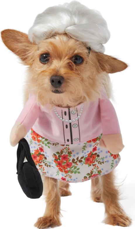'Granny' Dog Halloween Costume