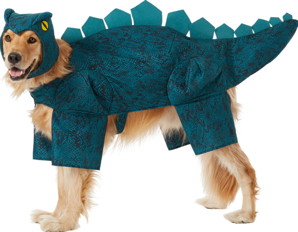 Stegosaurus Halloween Costume for Dogs