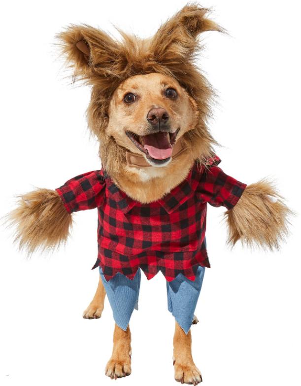 Walking Werewolf Dog Halloween Costume